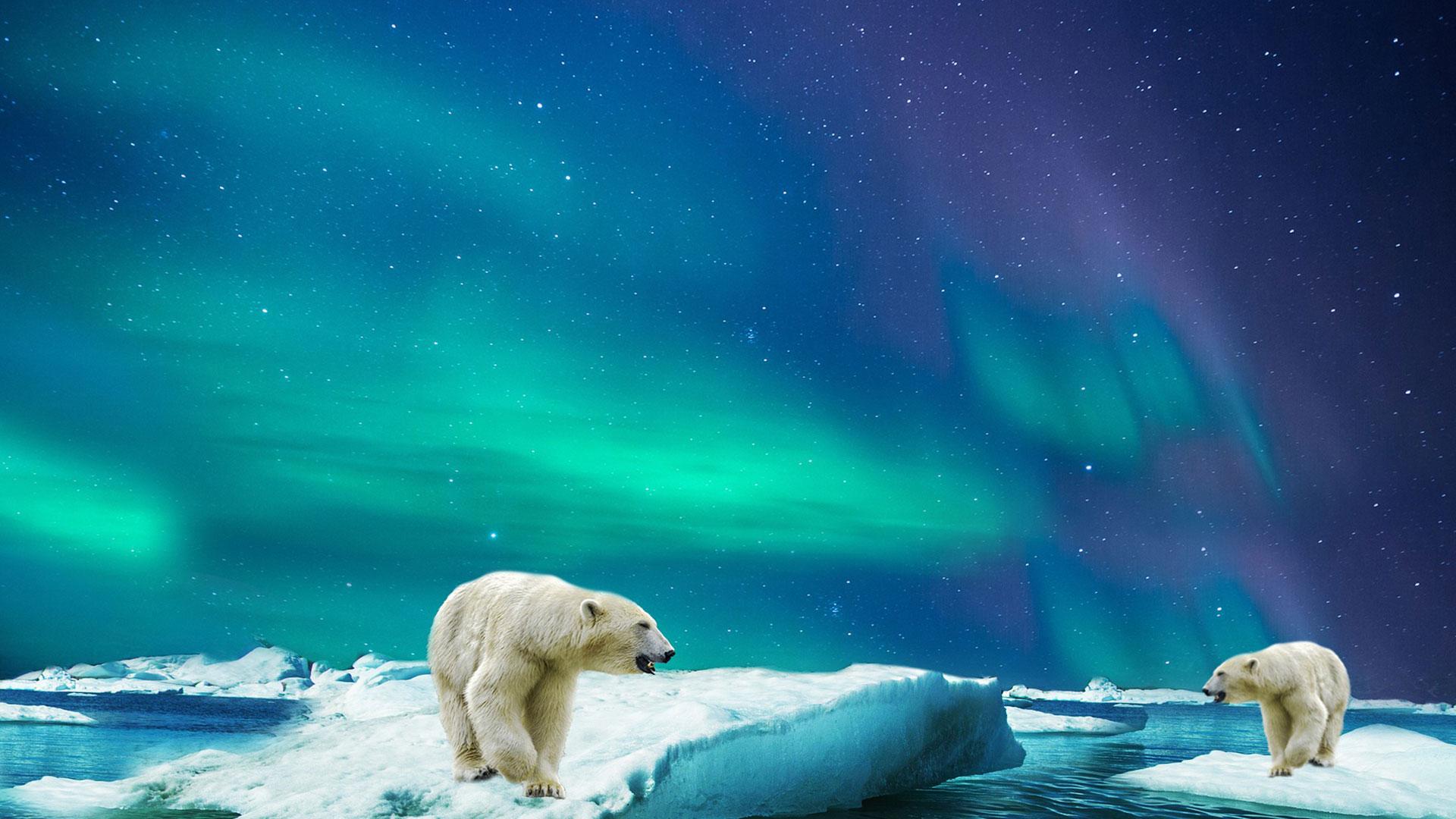 Abenteuerreise nach Spitzbergen